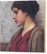 Classical Beauty John William Godward Wood Print