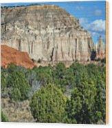 Claystone - Sandstone - Kodachrome Basin Wood Print