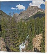 Clear Creek, Flat Top Mountain Wood Print