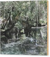 Clear Lithia Springs Wood Print