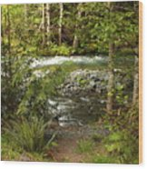 Clear Mountain Stream Wood Print