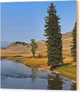 Clear Skies Over Slough Creek Wood Print