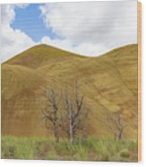 Clear Sky At Painted Hills Wood Print