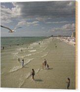 Clear Water Beach Wood Print