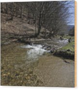 Clear water Shteaza near Rasinari Wood Print