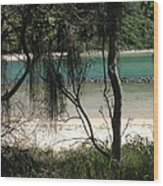 Clear Waters At The Beach Wood Print