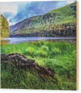Clear Waters Of Glendalough Wood Print