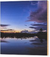 Clearing Storm Over The Anhinga Trail Wood Print