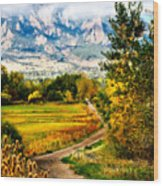 Clearly Colorado Wood Print