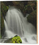 Clearwater Falls 1 Wood Print