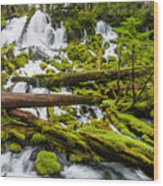 Clearwater Falls And Rapids Wood Print