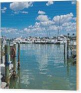 Clearwater Marina Wood Print