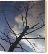 Clee Wood Print