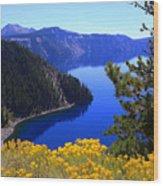 Cleetwood Cove At Crater Lake Wood Print