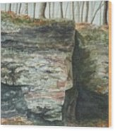 Cleft.  Rock Shelf Fissure And Autumn Leaves Wood Print