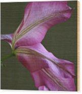Clematis Breeze Wood Print