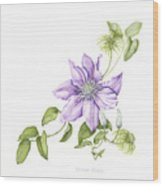 Clematis Cezanne Wood Print
