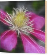 Clematis In Pink Wood Print