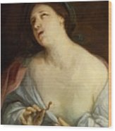 Cleopatra 1640 Wood Print