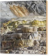 Cleopatra Terrace In Yellowstone National Park Wood Print