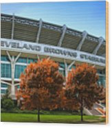 Cleveland Browns Stadium Wood Print