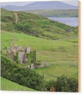Clifden Castle Wood Print