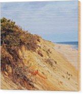 Cliff At Marconi Beach Wood Print