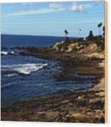 Cliff Drive Laguna Beach Wood Print