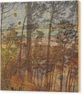 Cliff Dwellers Wood Print