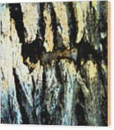 Cliff Dwellings Wood Print