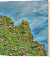 Cliff #h0 Wood Print