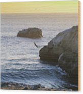 Cliff Jumping To Surf Wood Print