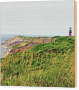 Cliff Off The Shores Of Martha Vineyard Wood Print