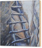 Cliff Palace Ladder Wood Print