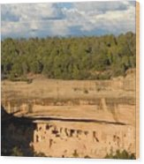 Cliff Palace Landscape Wood Print