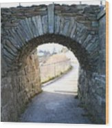 Cliff Walk Bridge Wood Print