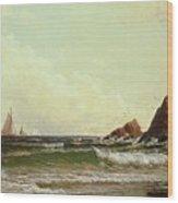 Cliffs At Cape Elizabeth Wood Print