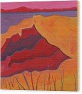 Cliffs Of Aquinnah Wood Print