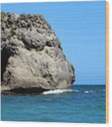 Cliffs On The Beach Dominican Republic  Wood Print