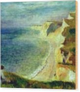Cliffs On The Coast Near Pourville 1879 Wood Print