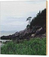 Cliffside II Wood Print