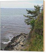 Cliffwalk Newport Wood Print