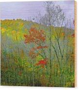 Climb Into Autumn Wood Print