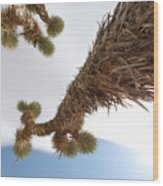 Climb This Wood Print