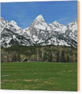 Climbers Ranch In Spring Wood Print