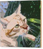 Climbing Cat Wood Print