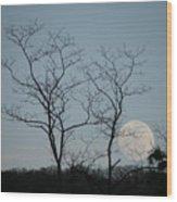Climbing Moon Wood Print