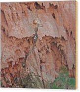 Climbing Mooney Wood Print