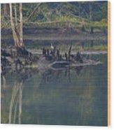 Clinch River Beauty Wood Print