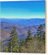 Clingmans Dome Panorama Wood Print